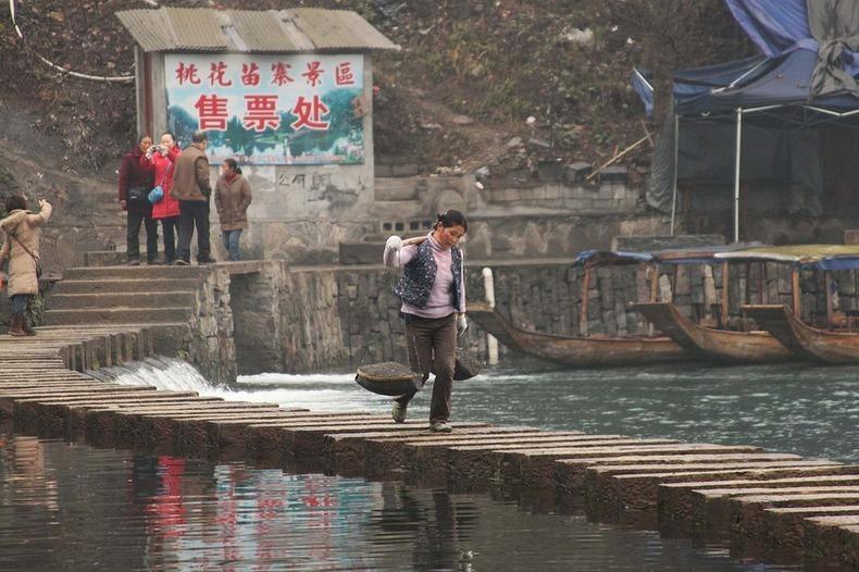 fenghuang-142