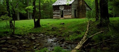 El bosque de los corazones dormidos # casa en el bosque