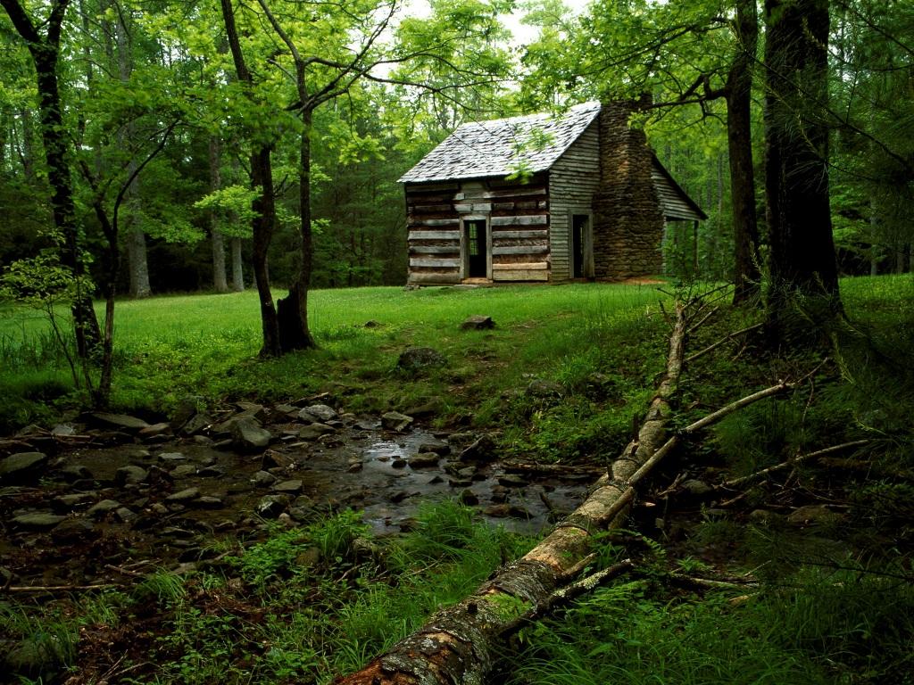 Las mejores casas para perderte en el bosque goplaceit - Casitas en el bosque ...
