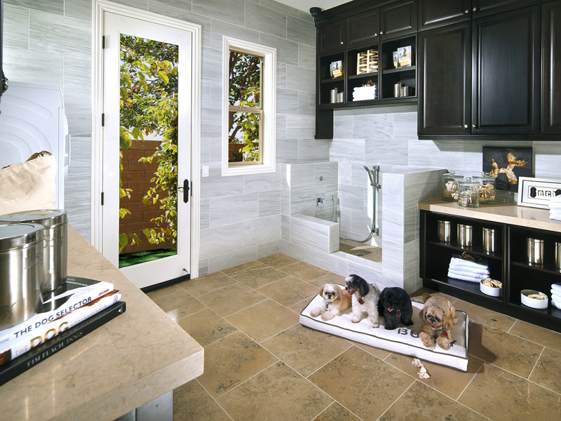Pets-Sweet Dog Suites