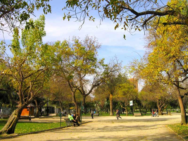 sendero-parque-araucano-santiago-chile