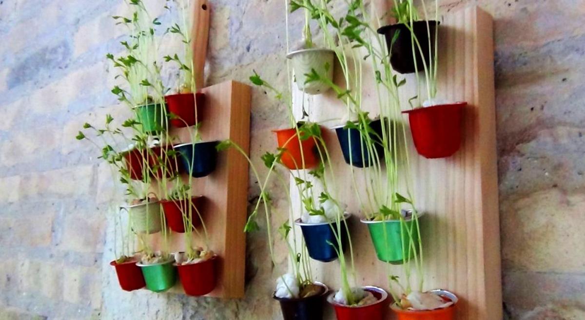 C mo reutilizar las c psulas de caf para hacer un peque o for Como hacer un jardin pequeno