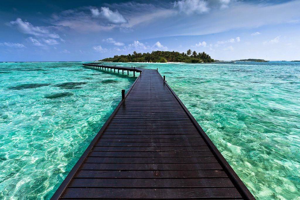 cocoa maldivas